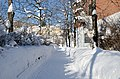 Snowy walking path Drammen 02.19 (1).jpg