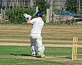 Southwater CC v. Chichester Priory Park CC at Southwater, West Sussex, England 037.jpg