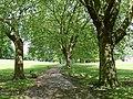 Spinney Hill Park, Leicester - geograph.org.uk - 470728.jpg