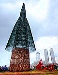 Cây Giáng Sinh Sri Lanka