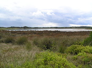 St Leonards Salt Lagoon - View from south-east