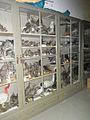Stadtmuseum Fotoprojekt CB 29.jpg