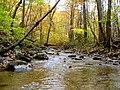 Stream at Susquahana State Park MD - panoramio.jpg