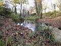 Stream at western edge of Fairwater Park - geograph.org.uk - 1050252.jpg