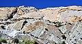 Structurally tilted Jurassic sedimentary rocks (Dinosaur National Monument, Utah, USA) 10 (48856862538).jpg