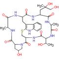 Strukt vzorec phalloidin.PNG