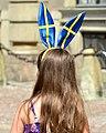 Sveriges Nationaldag 2013- Flaggans Dag-2.jpg