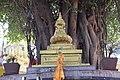 Swayambhu 2017 1001 29.jpg