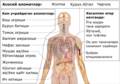 Symptoms of coronavirus disease 2019 2.0-uz cyrl.png
