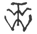 T. W. Wood signature.png