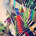 Tanabata (18602081554).jpg