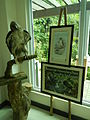 Taxidermied Philippine Eagle - Pithecophaga jefferyi - Ninoy Aquino Parks & Wildlife Center 01.jpg