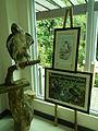 Taxidermied Philippine Eagle - Pithecophaga jefferyi - Ninoy Aquino Parks & Wildlife Center 01.jpg