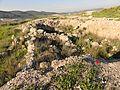 Tel Bet Shemesh - panoramio (1).jpg