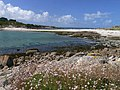 The (sand) Bar linking Gugh to St Agnes, from Gugh - geograph.org.uk - 357390.jpg