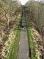 The Black Path at Langlee - geograph.org.uk - 695505.jpg