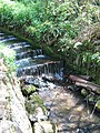 The Cascades in Brockhill Country Park - geograph.org.uk - 1274568.jpg