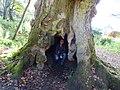 The Hermitage Dunkeld Scotland (6).jpg