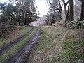 The Mound railway station (site), Highland (geograph 4419676).jpg