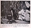 The Old Bedouin, aged over 112 years, and his Wife. (1918) - TIMEA.jpg