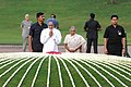 The Prime Minister, Dr. Manmohan Singh paying homage at the Samadhi of late Prime Minister, Pandit Jawaharlal Nehru on his 46th Death Anniversary, at Shanti Van, in Delhi on May 27, 2010.jpg