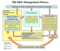The Risk Management Process.png