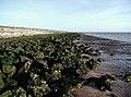 The River Humber, Sunk Island - geograph.org.uk - 312221.jpg