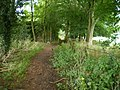 The South Staffs way, and a footpath junction - geograph.org.uk - 1456784.jpg
