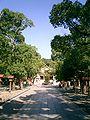 The approach to Minatogawa-Jinja1.JPG