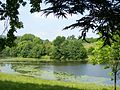 The lake, Witley Court.jpg