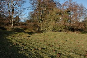 The remains of a moat at Little Sarnesfield - geograph.org.uk - 317371.jpg