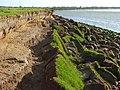 The tidal Eden, Burgh Marsh - geograph.org.uk - 858708.jpg