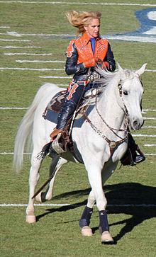 Denver Broncos Horse Head Cake Pan