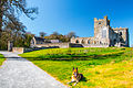 Tintern Abbey with the Mutt.jpg