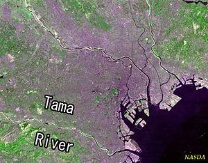 Tama River - Tama River, in a Landsat photo of the Tokyo area