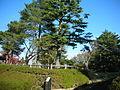 Tomigaoka Park.JPG