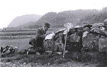 TorHelliesen1855-1914.jpg