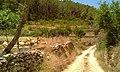 Torrent de Benirràs a prop de can Terracavat - panoramio.jpg