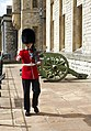 Tower of London (8145451179).jpg