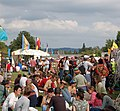 Towersey music festival - geograph.org.uk - 1306219.jpg