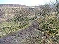 Track in Balnaknock - geograph.org.uk - 1106778.jpg