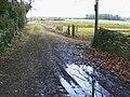 Track off the A429 near Baunton - geograph.org.uk - 1201816.jpg