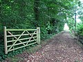 Track to Hall Farm - geograph.org.uk - 1405701.jpg