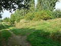 Tracks in Kirkstall Valley Nature Reserve - geograph.org.uk - 240876.jpg