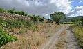 Trail in Vieussan, Hérault 01.jpg