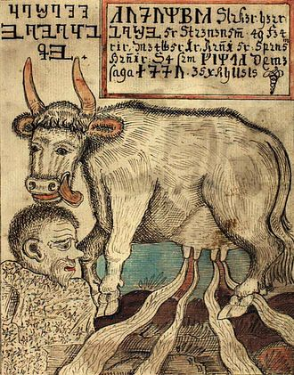 Búri - Búri is licked out of a salty ice-block by the cow Auðumbla in this illustration from an 18th-century Icelandic manuscript.