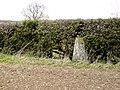 Triangulation pillar Mardon Hill - geograph.org.uk - 1021869.jpg