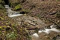 Trimbach Falls (26547922221).jpg