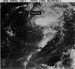 1981年热带风暴阿琳