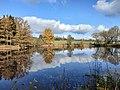 Trubský rybník.jpg